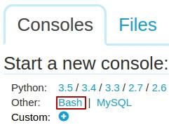bash_console_python_anywhere